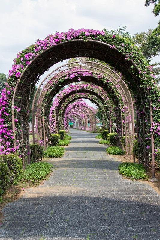 красота, сингапур