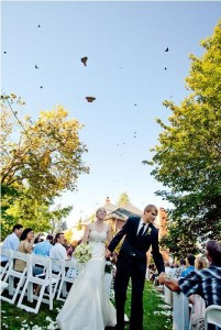 Wedding_Butterfly_Release_Olympia_Popes_Photographers