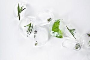 herb-ice