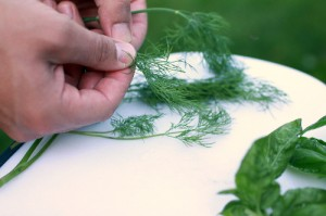 removing-stems-from-herbs