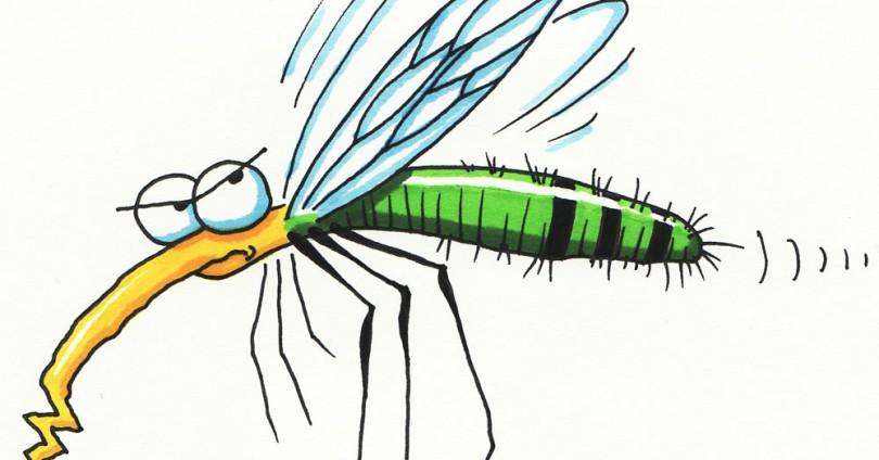 Как да действаме при ухапвания от комари