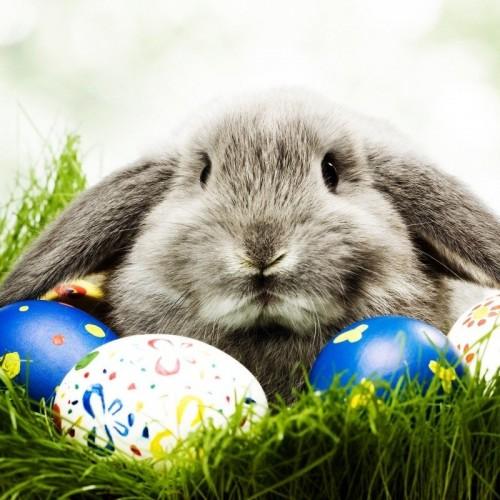 Пожелания за Великден 2015