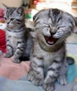 смехът