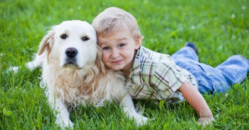 5 породи кучета, подходящи за деца